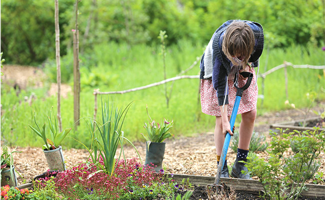Hanford School-Grounds and Gardening